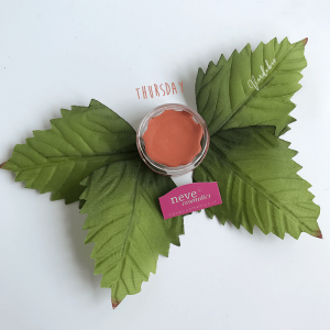Swatches Blush Garden Neve Cosmetics